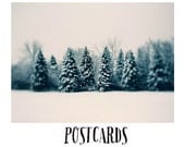 Christmas Card - Holiday - Snow - Postcards - Single Card - Blank Cards - Nature Photograph - Winter - Trees - Michigan - Pink - Landscape
