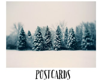 Stationary - Christmas Card - Holiday - Winter Card - Postcards - Single Card - Blank Cards - Nature Photograph - Winter Art - Michigan Art
