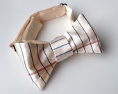 Notebook Paper bow tie. College Ruled bow tie. Wide Ruled lined paper tie. Silkscreen bowtie. Perfect teacher or writer gift.
