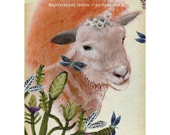3 Art Cards of Daisy the elder mother