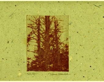 Tree Tops zinc plate etching aquatint on handmade paper