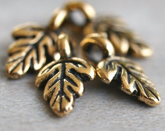 TierraCast Antique Gold 10mm Oak Leaf Charm : 4 pc