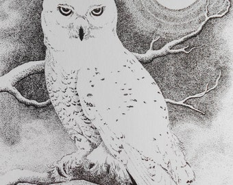 Owl ink drawing...Print, 8X10