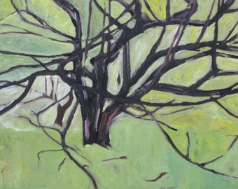 """Art Original Plein Air Landscape Oil Painting Impressionist Abstract Green Apple Tree Quebec Canada By Fournier """" Into The Branches  14 x 18"""