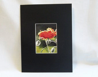 "ACEO mat - Black with White Core - to fit 6 "" x 8"" frame"