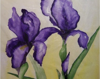 Two Purple Irises Original Watercolor Painting