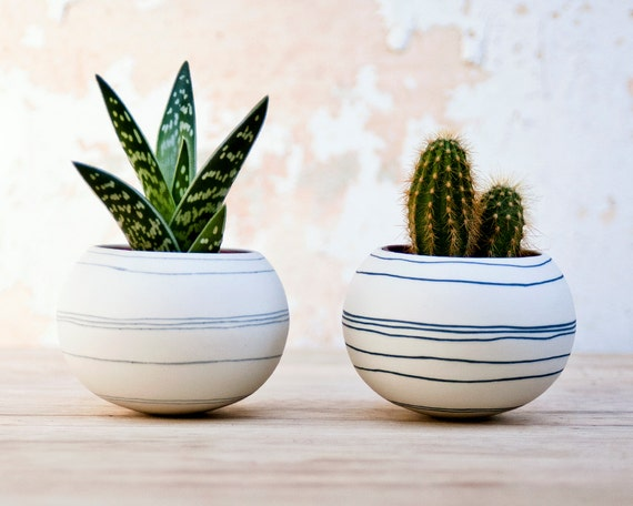 colorful porcelain planter (light gray stripes). Ceramic planter for, cactus, succulent or air plant. Crafted by Wapa Studio.