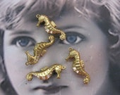 Raw Brass Sea Horse Charms 115RAW x4
