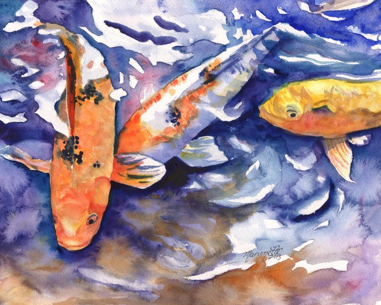 Koi 8x10 art prints koi fish art asian koi paintings for Koi fish paintings prints
