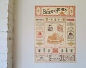 Vintage Style Bees & Honey Decorative Wrap and Craft Paper by Cavallini