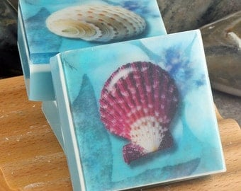 Graphic Art Soap - Seashells Set of 3 Guest Size Soaps in a Fresh Ocean Scent, Themed Glycerin Soap