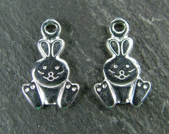 Sterling Silver Rabbit Charm 12mm (CG5706)