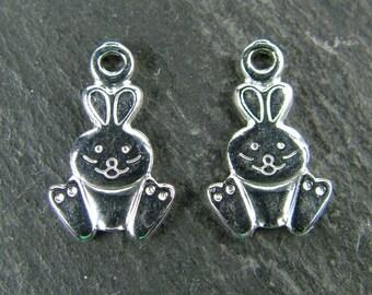 Sterling Silver Rabbit Charm 12mm (ET5706)
