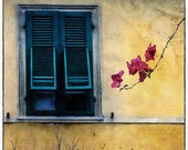 Pisa Window (Fine Art Print - Pisa Italy - Collage - Blue - Tans - Red flower - Warm and cool colors - wall art - Europe - travel