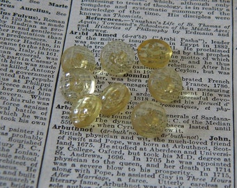 Eight Champagne Shank Plastic Vintage Buttons