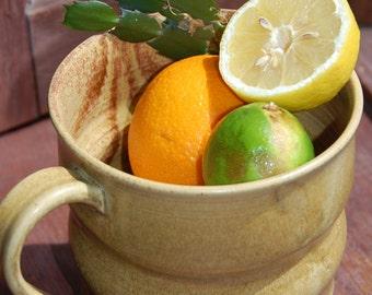Kitchen Compost Jar in Sienna Curvy Jar for the Eco-Friendly