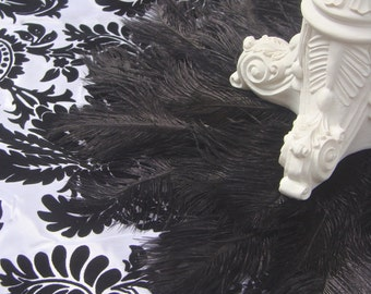 """SALE! Exquisite BLACK 16"""" Ostrich and Peacock Feather mat"""