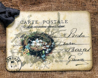 French Bird Nest Eggs Postcard Tags #645