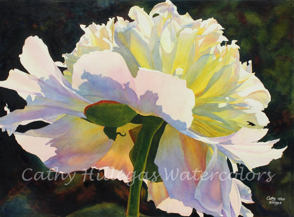 White Peony Art | www.pixshark.com - Images Galleries With ...