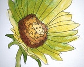 Texas Sunflower, Set of 4 Blank Note Cards, 4.25x5.5 inches