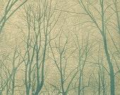 Cathedral, Linoleum Relief Print