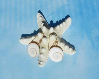 Shiva Eye Seashell Earrings