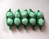 Twins Baby Shower Favor  Green Seed Bomb Pea Pods