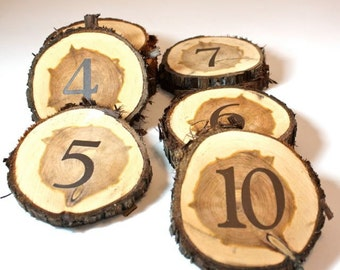 Set of 18 Table Numbers, wood slice, cedar tree slice, ready to ship, reclaimed salvaged tree, rustic woodland outdoor wedding party event