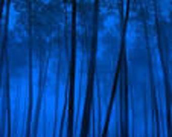 1 oz Blue Sugar Type Fragrance Oil