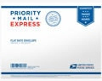 Express Shipping (USA)  - If You Need Your Purchase QUICKLY Please Purchase Express Shipping