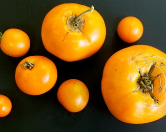 Moonglow Orange Tomato Seeds