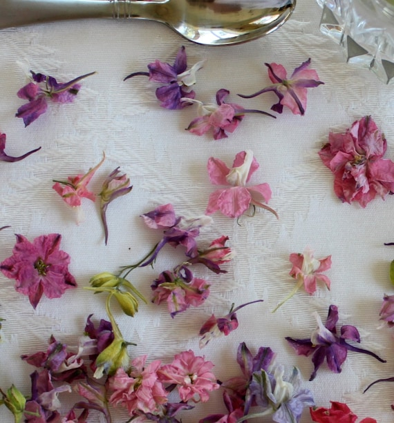 Dried Larkspur, Wedding Confetti, Dried Flowers, Pink Larkspur, Pastel,Tossing Flowers, Lavender, Blue, Real Flowers, 7 US cups of Larkspur