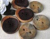 Wood Buttons - 6 Rustic Ohio Pine and Cedar Wood Tree Branch Buttons - 2 holes, 1 3/8 inches - For journals, purses, pillows, and more