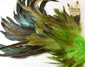 120pcs+- Rooster Coque Feathers Assortment, sadle, schlappen, and tail, three different types of rooster feathers- LIME