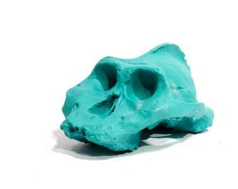 Paranthropus chalkboard skull