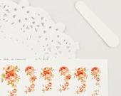 Haute High Tea Nail Wraps - Roses corail / fond blanc