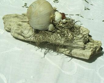 Beach Wedding/Driftwood Arrangement/Beach Scape/Seashell Decor/Beach Decor/Seashells/Coastal Decor Arrangement