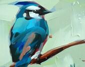 Blue Jay no. 16 bird art print by Angela Moulton 6 x 6 inches prattcreekart
