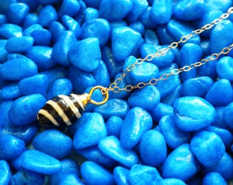 Zebra shell seashell Necklace - 14k gold filled chain 18 inch