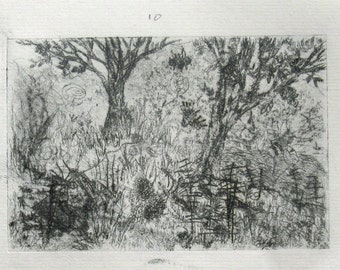 Drypoint Print: Insects, trees and brush.