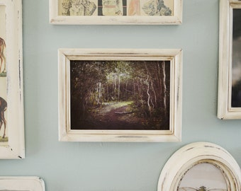 Woodland Pathway Photograph in Rustic Frame