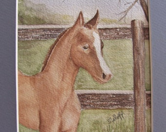Horse Watercolor Painting Original Art  5x7 with 8xl0 Mat