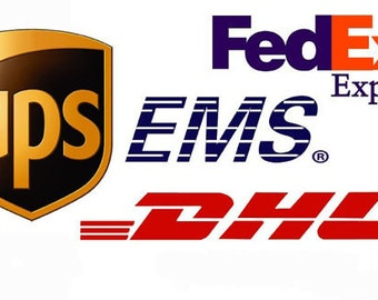 Express UPS Delivery (USA, Canada Europe)
