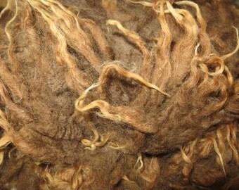 Raw Shetland Lamb Wool Locks /  Spinning / Felting