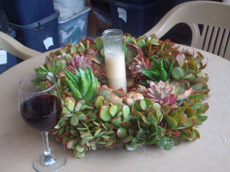 Christmas living succulent plant wreath glass enclosed