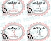 Monthly Baby Stickers Baby Month Stickers Baby Girl Month Stickers Monthly Photo Stickers Monthly Milestone Stickers