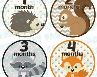 Monthly Baby Stickers Baby Month Stickers Gender Neutral Month Stickers Monthly Photo Stickers Monthly Milestone Stickers Bodysuit Stickers