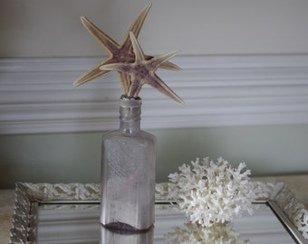 Vintage Lavender Glass Bottle with Two Royal Starfish - Beach Decor