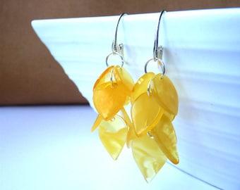 Baltic Amber Cluster Earrings Butterscotch Dangling 925 silver