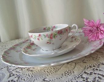 Antique Teacup Saucer Plate Carl Tielsch Place Setting Pink Rose Pattern Altwasser Germany Porcelain Teacup Saucer Plate Late 1800s